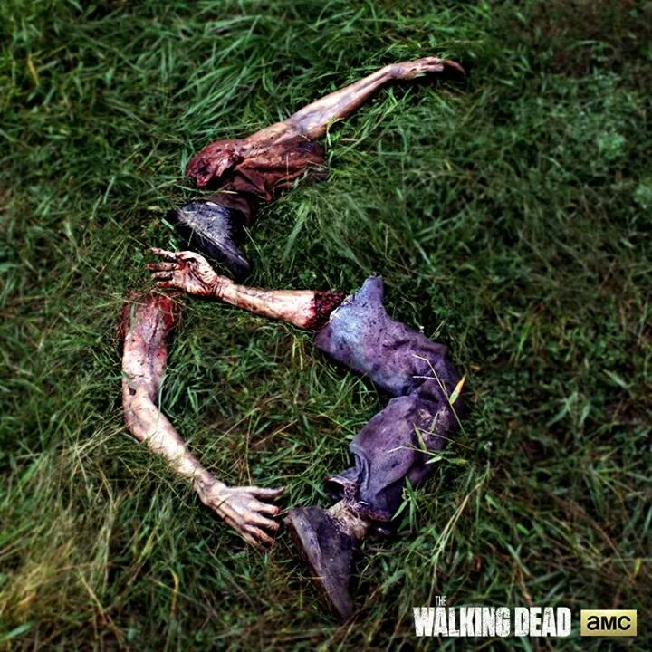 The Walking Dead sæson 6 er bestilt