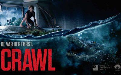 Crawl (4/6)