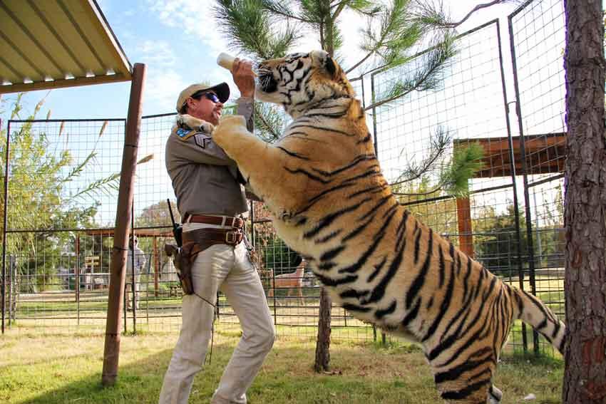 Tiger King – Netflix anmeldelse