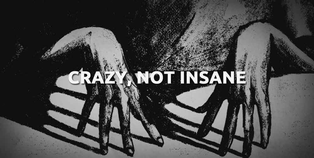 Crazy, Not Insane – Anmeldelse (4/6)