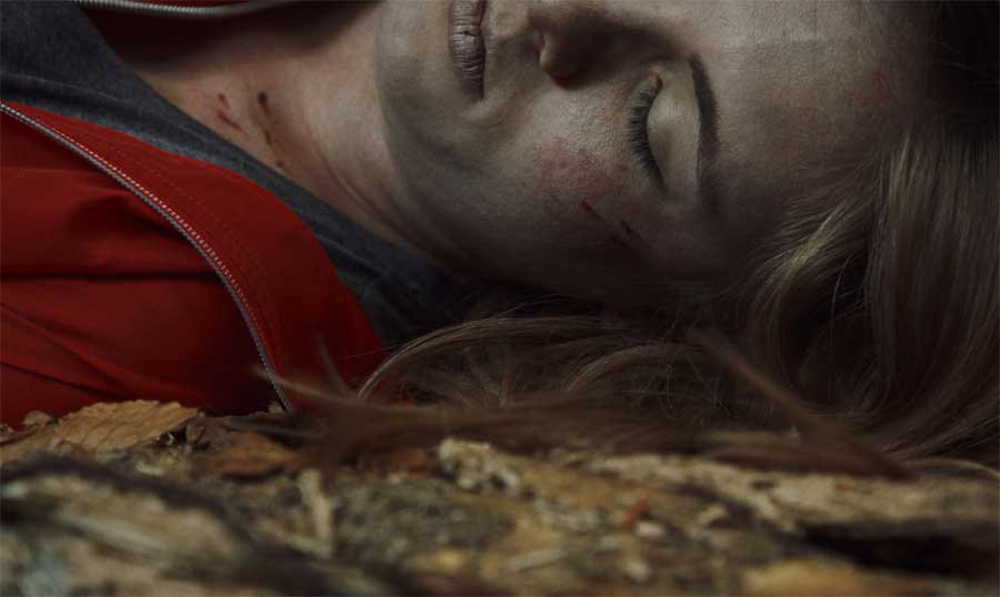 Capitani: Sæson 1 – Netflix anmeldelse